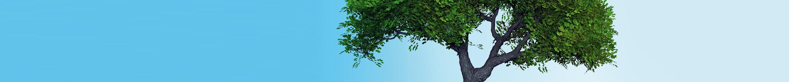 Nastri perforati per la costruzione di case ecologiche for Nuove planimetrie per la costruzione di case
